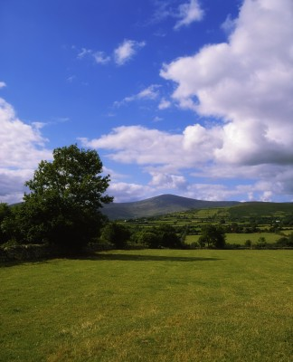 Carlow Cottage Holidays